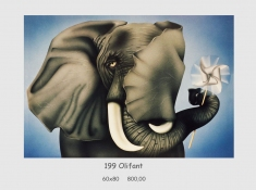 gallery/olifant